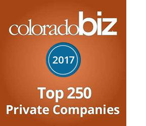 COBiz Top 250 2017